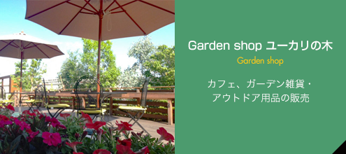 Garden shop ユーカリの木